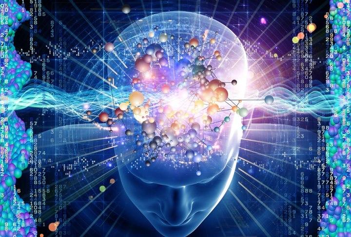¿Para qué sirve el intelecto?
